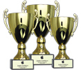 Picture for category Cups Awards