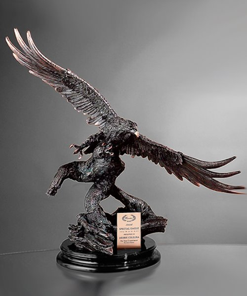 Picture of Soaring Eagle Award