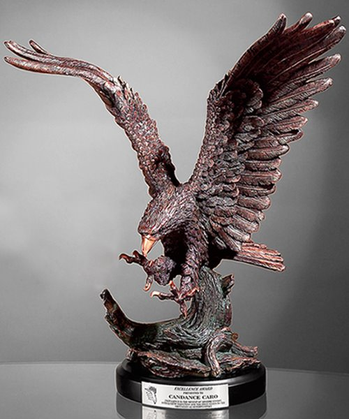 Picture of Eagle Landing Award