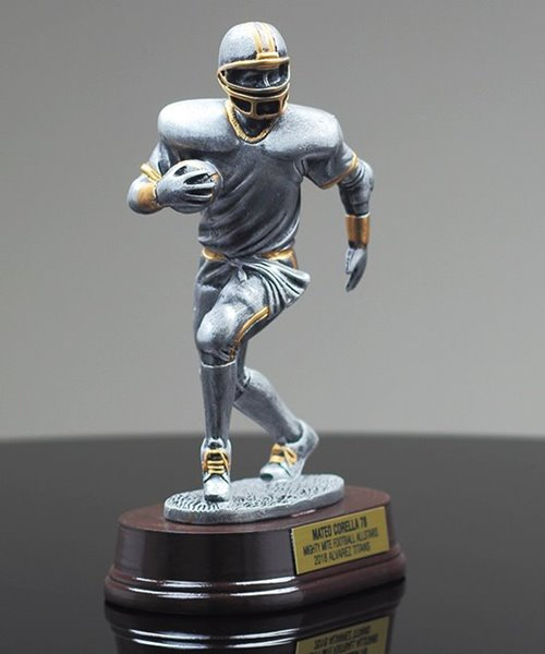 Picture of Silverstone Football Award