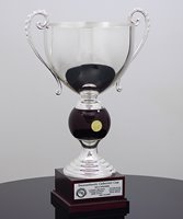 Picture of Trophy Cup Delano