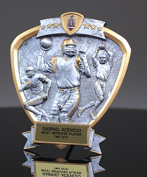 Picture of Silverstone Shield Football