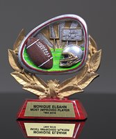 Picture of Stamford Athletic Football Award