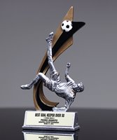 Picture of Live Action Soccer Award