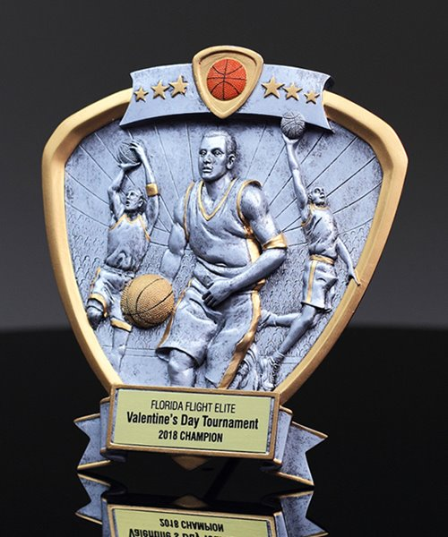 Picture of Silverstone Shield Basketball