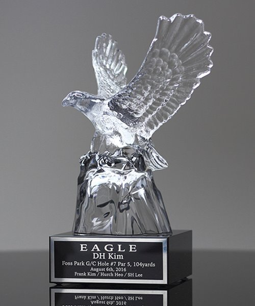 Picture of Landing Crystal Eagle
