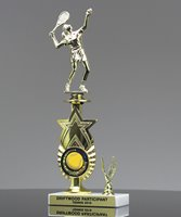 Picture of Star Achievement Trophy