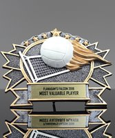 Picture of Silverstone 3-D Volleyball Award