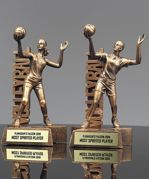 Picture of Billboard Volleyball Award