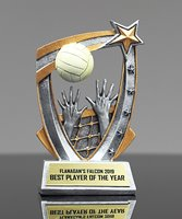 Picture of Volleyball 3D Star Award