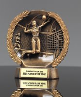Picture of Bronzestone Volleyball Award