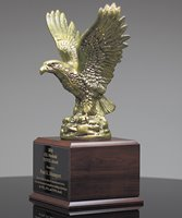 Picture of Eagle in Flight Award