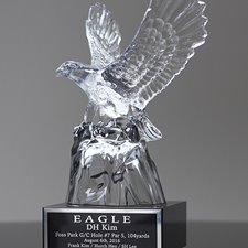 Picture for category Glass Eagle Trophy