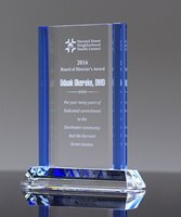 Picture of Sentinel Award