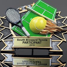 Picture for category Tennis Resins