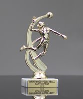 Picture of Sport Motion Volleyball Trophy