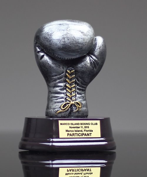 Picture of Silverstone Boxing Glove Award