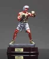Picture of Gallery Boxing Award