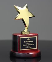 Picture of Stellar Performer Award