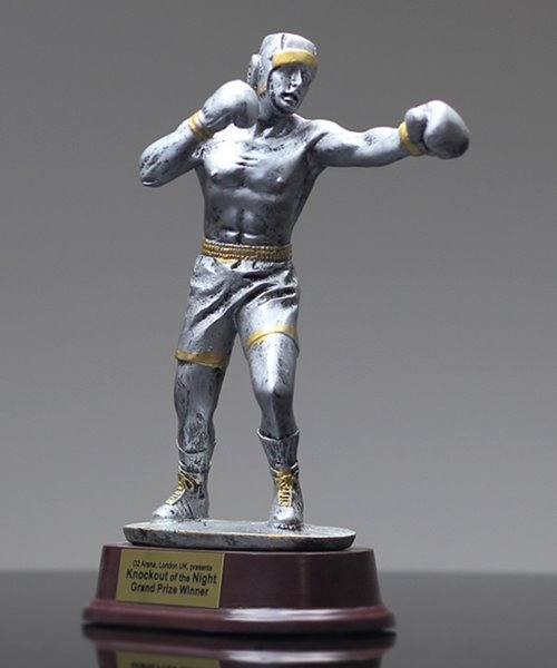 Picture of Silverstone Male Boxing Award