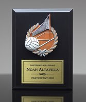 Picture of Color-Theme Volleyball Plaque