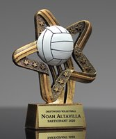 Picture of Mega Star Volleyball