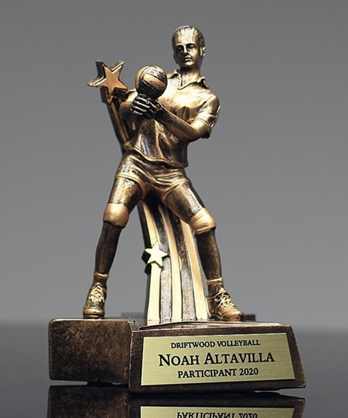 Picture of Superstar Volleyball Awards