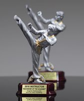 Picture of Martial Arts Classic Resin Award Male