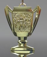 Picture of Cross CountryTrophy Cup Medals