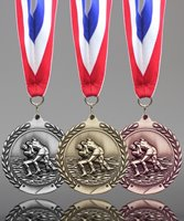 Picture of Traditional Wrestling Medal