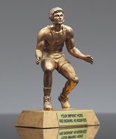 Picture of GR Series Wrestling Award