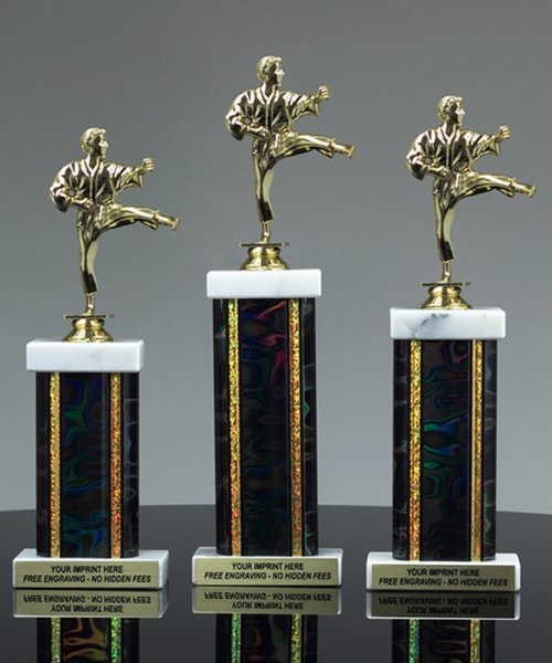 Picture of Classic Martial Arts Trophy