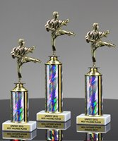 Picture of Martial Arts Athletica Trophy