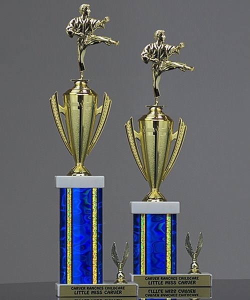 Picture of Victory Cup Karate Trophy
