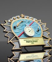 Picture of Silverstone 3-D Swimming Award