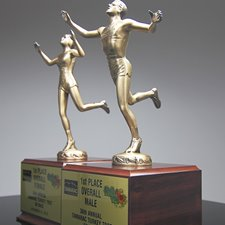 Picture for category Running Awards