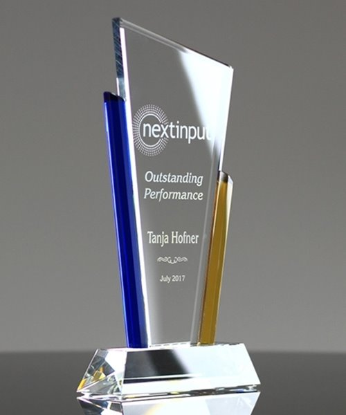 Picture of Business Recognition Award