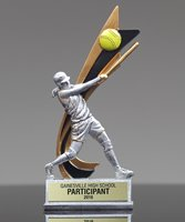 Picture of Live Action Softball Award