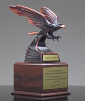 Picture of Eagle Achievement Award
