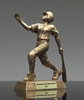 Picture of GR Series Softball Award