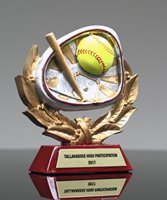 Picture of Stamford Athletic Softball Award