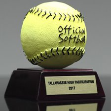 Picture for category View All Softball Awards