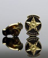 Picture of Service Award Star Pin