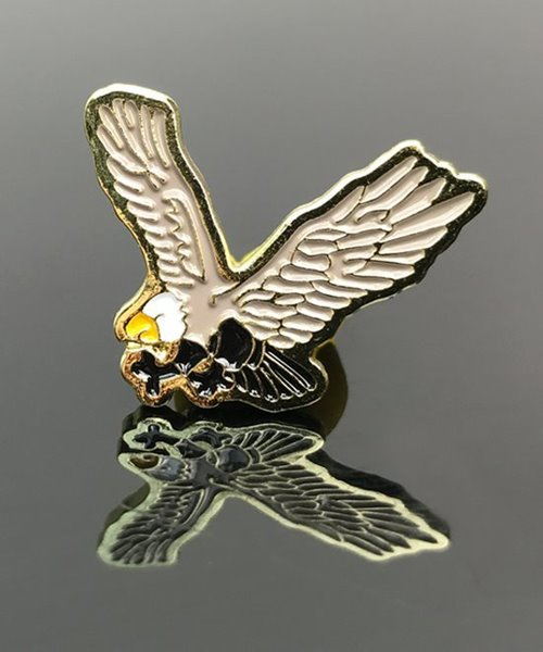 Picture of Eagle Award Pin