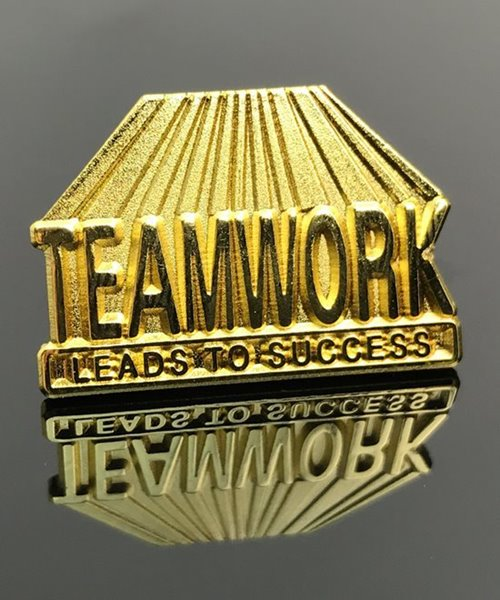 Picture of Teamwork Leads to Success Pin