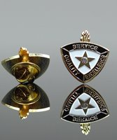 Picture of Service Quality Excellence Pin