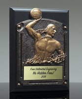 Picture of Greystone Water Polo Plaque