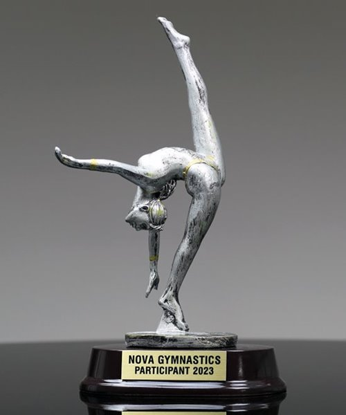 Picture of Silverstone Female Gymnast