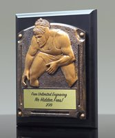 Picture of Greystone Wrestling Plaque