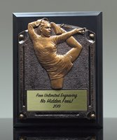 Picture of Greystone Cheer Plaque